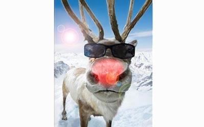 Rudolph_1514955c